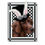 Easter - Some Bunny Loves You - Irish Setter Cut Out