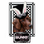 Easter - Some Bunny Loves You - Irish Setter Photo Sculpture