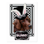 Easter - Some Bunny Loves You - Irish Setter Postcard