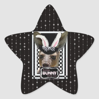 Easter - Some Bunny Loves You - Kangaroo Star Stickers