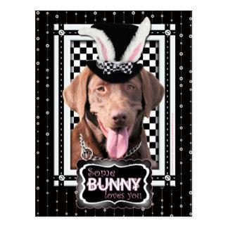 Easter - Some Bunny Loves You - Labrador - Chocola Postcard
