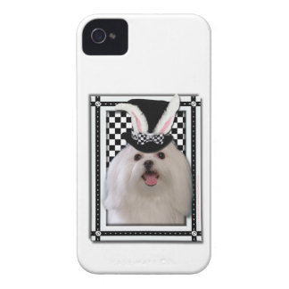 Easter - Some Bunny Loves You - Maltese iPhone 4 Case