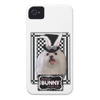 Easter - Some Bunny Loves You - Maltese iPhone 4 Cover