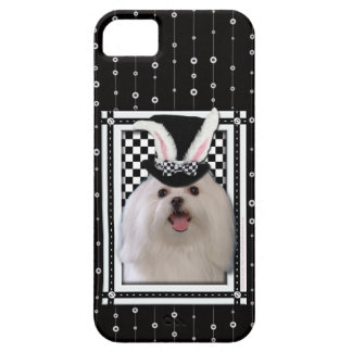 Easter - Some Bunny Loves You - Maltese iPhone SE/5/5s Case