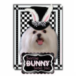 Easter - Some Bunny Loves You - Maltese Photo Sculptures