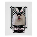Easter - Some Bunny Loves You - Maltese Poster
