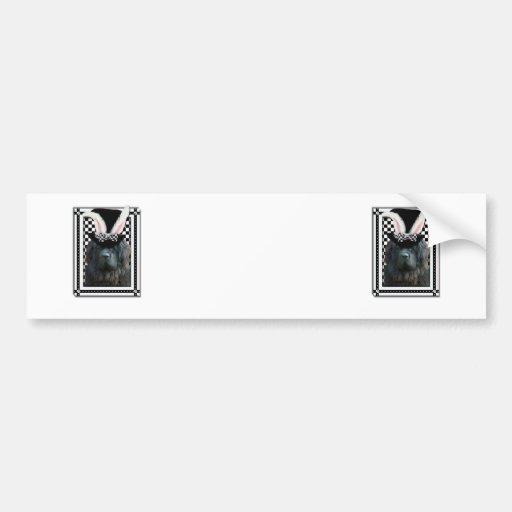 Easter - Some Bunny Loves You - Newfoundland Car Bumper Sticker