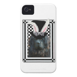 Easter - Some Bunny Loves You - Newfoundland iPhone 4 Cases