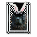 Easter - Some Bunny Loves You - Newfoundland Photo Sculpture
