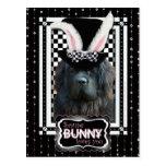 Easter - Some Bunny Loves You - Newfoundland Postcard