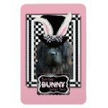 Easter - Some Bunny Loves You - Newfoundland Rectangle Magnet