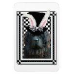 Easter - Some Bunny Loves You - Newfoundland Rectangular Magnet