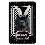 Easter - Some Bunny Loves You - Newfoundland Flexible Magnets