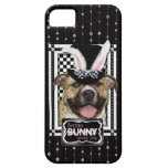 Easter - Some Bunny Loves You - Pitbull iPhone 5 Cover