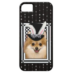 Easter - Some Bunny Loves You - Pomeranian iPhone SE/5/5s Case