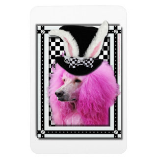 Easter - Some Bunny Loves You - Poodle - Pink Rectangular Photo Magnet