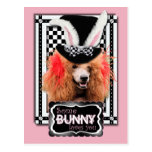 Easter - Some Bunny Loves You - Poodle - Red Postcard