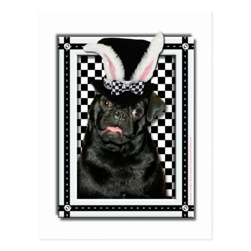 Easter - Some Bunny Loves You - Pug Ruffy Post Cards