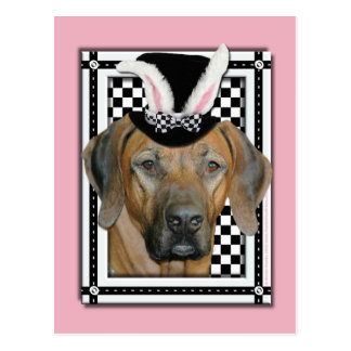 Easter - Some Bunny Loves You Rhodesian Ridgeback Postcard