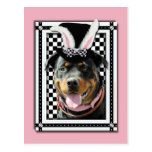 Easter - Some Bunny Loves You - Rottweiler Postcard