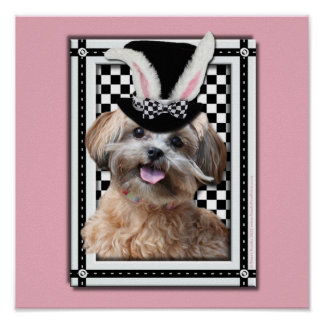 Easter - Some Bunny Loves You - ShihPoo Posters