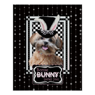 Easter - Some Bunny Loves You - ShihPoo Poster