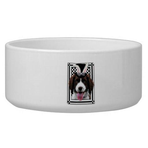 Easter - Some Bunny Loves You - Springer Spaniel Dog Food Bowl