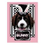 Easter - Some Bunny Loves You - Springer Spaniel Postcard