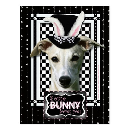 Easter - Some Bunny Loves You - Whippet Postcard