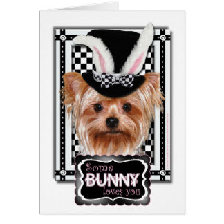 Easter - Some Bunny Loves You - Yorkie Card