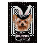 Easter - Some Bunny Loves You - Yorkie Cards