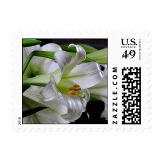 Easter stamp #7  00289450