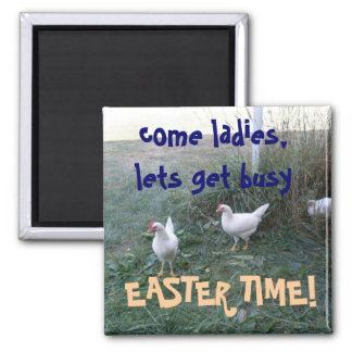 EASTER TIME CHICKENS magnet