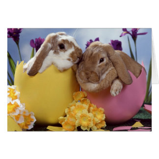 Easter Wishes Greeting Cards
