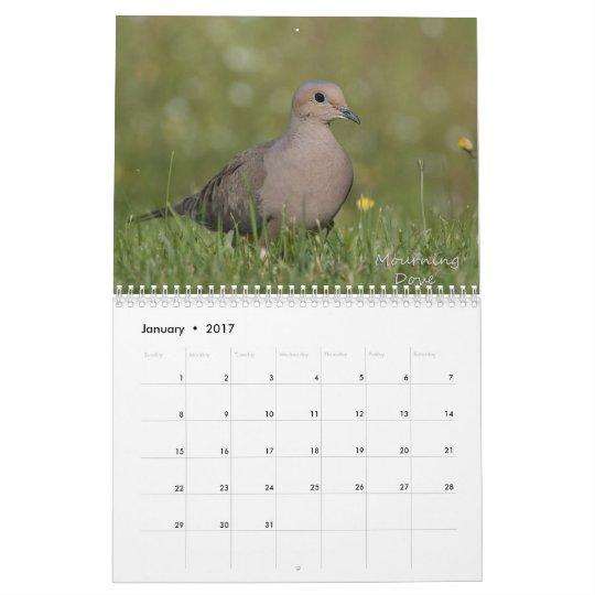 Eastern Backyard Birds Calendar