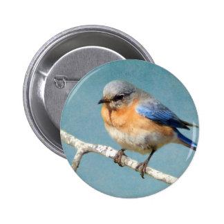 Eastern Bluebird 2 Inch Round Button