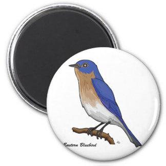 EASTERN BLUEBIRD 2 INCH ROUND MAGNET