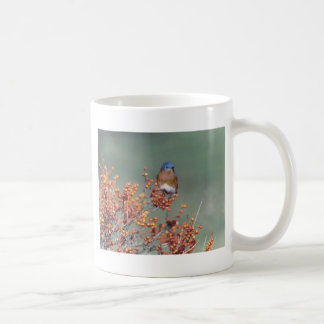 Eastern Bluebird Classic White Coffee Mug
