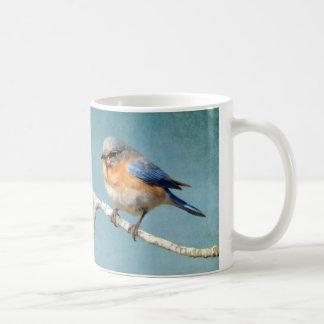 Eastern Bluebird Coffee Mug