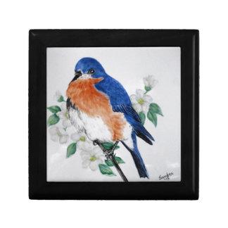 Eastern Bluebird in springtime Keepsake Boxes