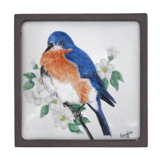 Eastern Bluebird in springtime Premium Gift Boxes