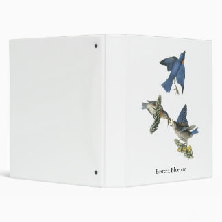 Eastern Bluebird, John Audubon Binder