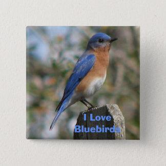 Eastern Bluebird Male Button