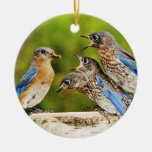 Eastern Bluebird Double-Sided Ceramic Round Christmas Ornament