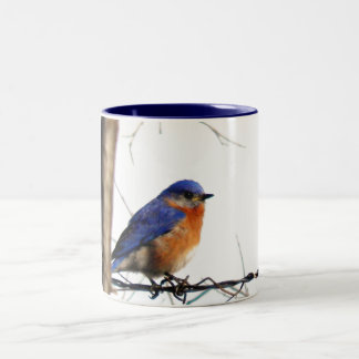 Eastern Bluebird Photo Two-Tone Coffee Mug