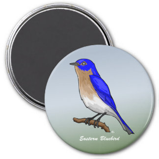 Eastern Bluebird rev.2.0 Buttons and Flair 3 Inch Round Magnet