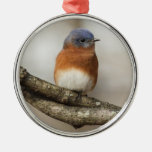 Eastern Bluebird Round Metal Christmas Ornament