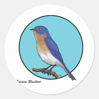 EASTERN BLUEBIRD ROUND STICKERS