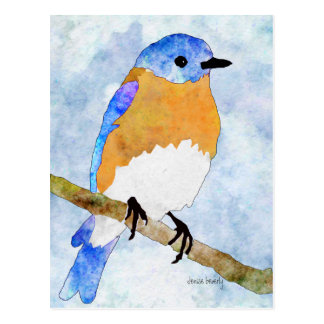 Eastern Bluebird watercolor style postcards
