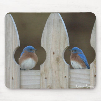 Eastern Bluebirds Mouse Pad